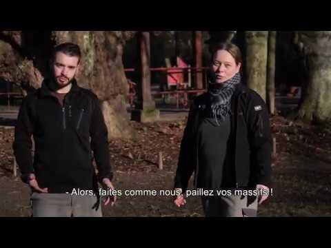 Pause Jardin #5- Le paillage